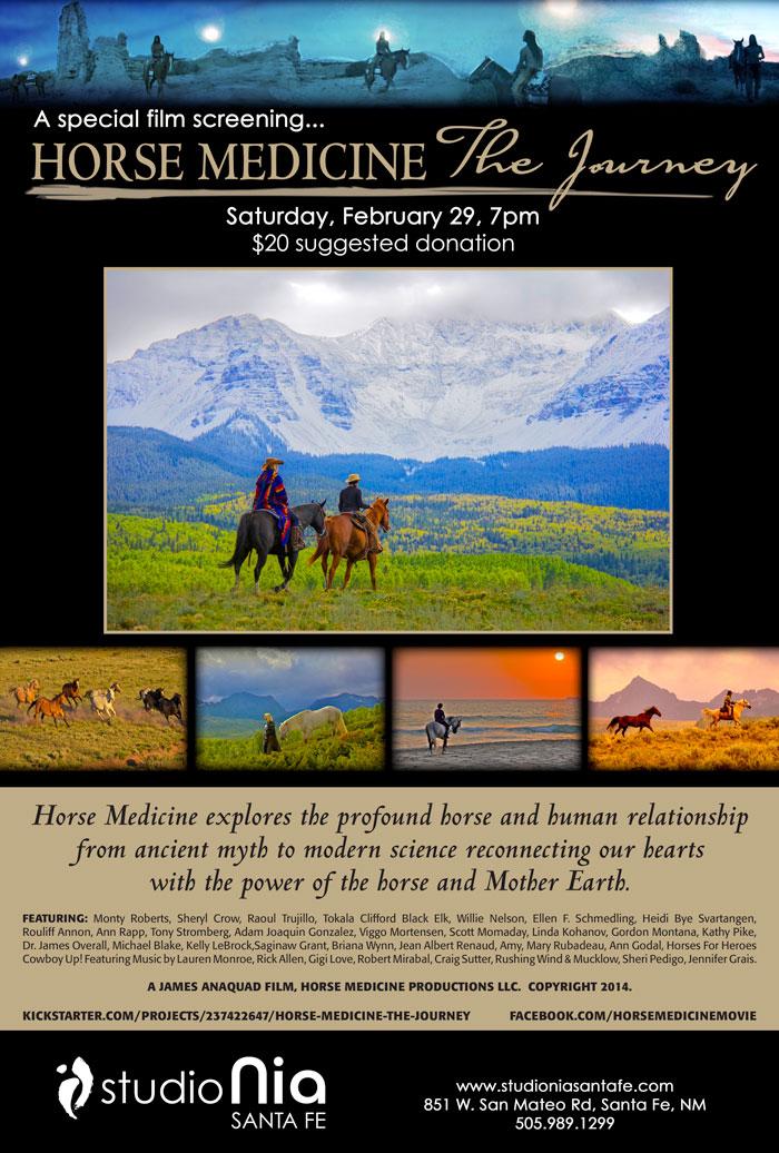 Horse-Medicine-poster